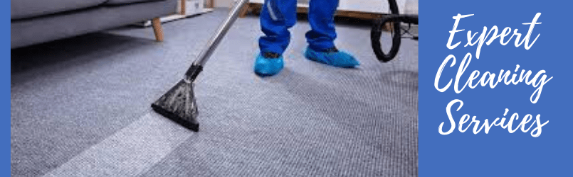Carpet Cleaning and Mold Removal